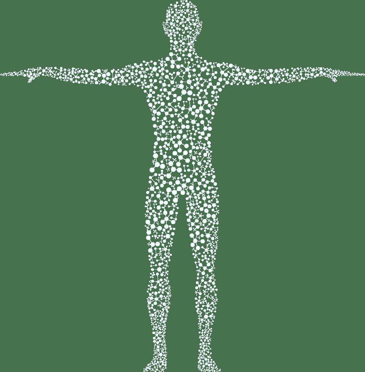 Visualisierung eines Menschen